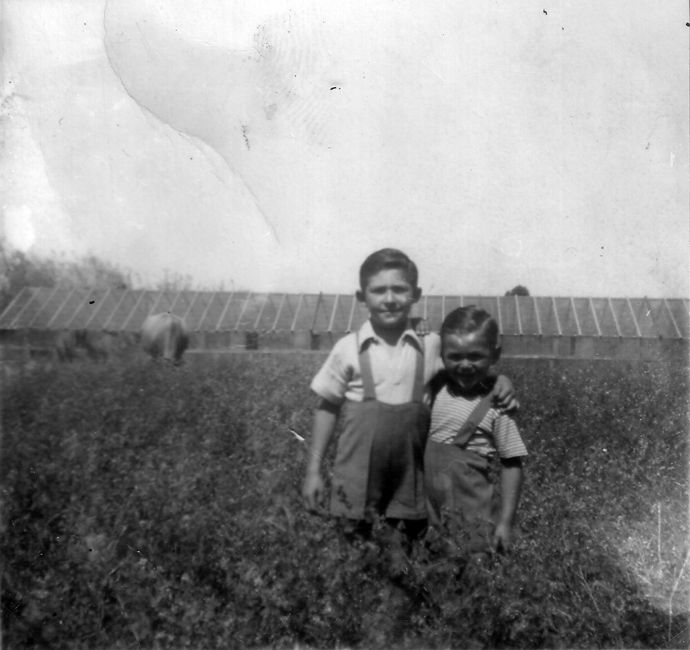 Johnny & Romano in front of their parents' market garden, glasshouses and cow in background
